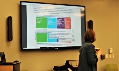 MLAP Panel Health Diagram